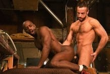 Stud Finder: Stany Falcone & Race Cooper